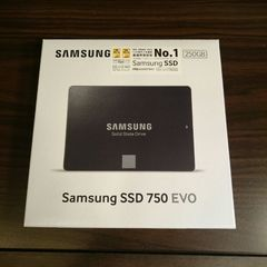 �T���X�� SSD 750 EVO�V���[�Y MZ-750 250GB/IT