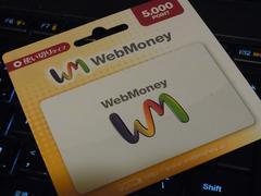 WebMoney �E�F�u�}�l�[ 5000�~�� ������߲�e��Ή�
