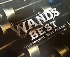 ベストCD WANDS BEST HISTORICAL BEST ALBUM ワンズ
