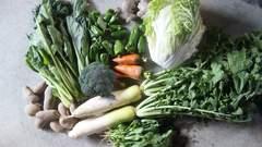 新鮮★無農薬の野菜セット(白菜ほか)