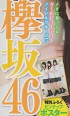 菅井友香、渡邉理佐、渡辺梨加(欅坂46)ピンナップポスター