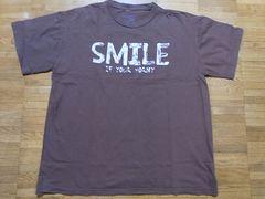 即決USA古着鮮やかロゴデザインTシャツ!アメカジレア