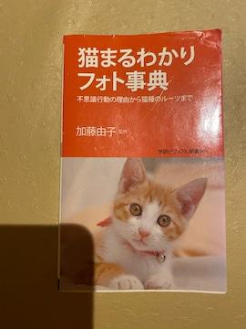 猫まるわかりフォト事典