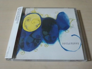 ソウルズベリーCD「the end of vacation」SOULSBERRY●