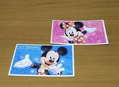 Disney passport ディズニー 大人用 パスポート 2枚 TDL TDS