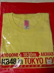 「AKB48 in TOKYO DOME 〜1830mの夢〜」Tシャツ チーム4・L