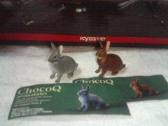 チョコQ  アニマルテイルズ4  レッキス グレー & アグーチ 中型ウサギ  2種