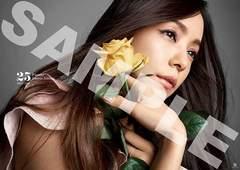 安室奈美恵「Finally」タワレコオリジナル特典ポスター 未開封