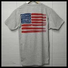 フルーツオブザルーム 星条旗USA Tシャツ/GR/L