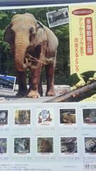 多摩動物公園開園50周年記念80円フレームシール切手10枚シート新品未開封品