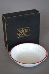 Adam&Eve たち吉 中皿 大皿食器 ライン柄 洋器 野菜 未使用 新品