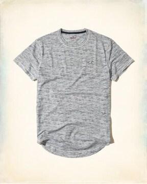 1702 ホリスター クルーネックTシャツ M