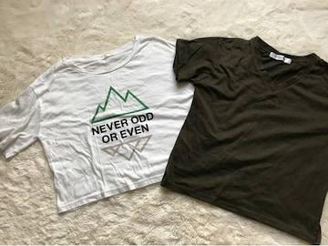 Tシャツ2枚セット Mサイズ