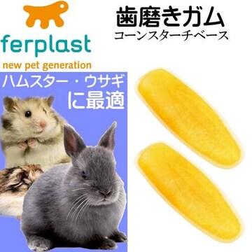 ウサギ・ハムスター用歯磨きガム真空パック コーン型 Fa310