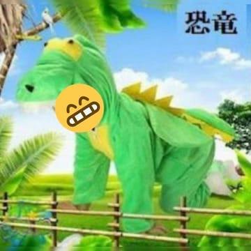 新品未使用キッズ着ぐるみイベントに年賀状パーティーハロウィン【恐竜】�G