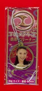 携帯クリーナー CR 銭形平次 AKB48 TEME-Z 秋元才加 新品