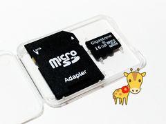送料無料◇ギガストーン マイクロSDHC16GB Gigasutone micro16GB クラス10