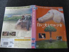 ● 白い犬とワルツ 仲代達矢、若村麻由美