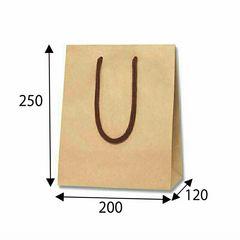☆新品☆手提紙袋(無地赤色)100枚(ラッピング、業務用等に…)