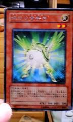 遊戯王【光・緑光の宣告者】