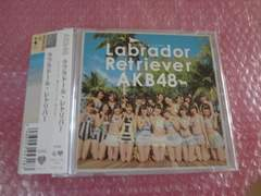 先着1円!掘AKB48 ラブラドール・レトリバー※同梱不可