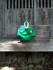 ブルマ緑3(名札付き)