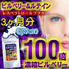 送料込☆100倍濃縮ビルベリー&ルテイン【3ヶ月分】1袋