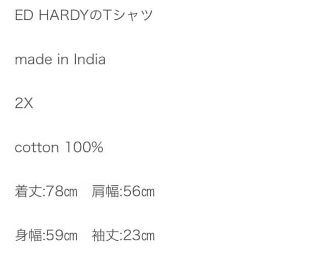 ED Hardy T-shirt < ブランドの