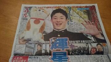 「吉田輝星」2018.11.16 日刊スポーツ