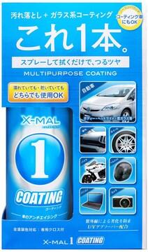 プロスタッフ 洗車用品 ガラス系コーティング剤 300ml