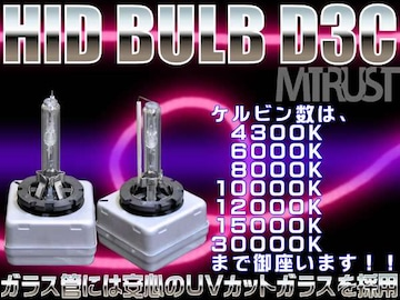 エムトラ送料無料HIDバルブD3(D3R/D3S)35W12000K