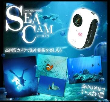 1200万画像 防水仕様 スポーツカメラ MI-DV1000