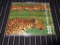 FANTASTIC PLASTIC MACHINE『ZOO』初回盤美品(MONDO GROSSO,PE'Z