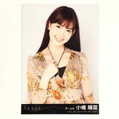 AKB48 風は吹いている 劇場盤 小嶋陽菜 生写真