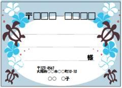 ■13(宛名シール)8枚■ホヌ�@