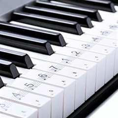 初心者にピッタリ! ピアノ 用 88鍵盤 音符 シール ステッカー
