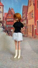 ジェニーちゃん、ブライス、リカちゃんのスカート