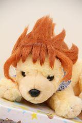 SALE【オリジナル】Wigs2you☆P-030☆犬☆猫☆ペットウィッグ